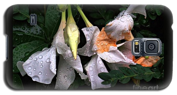 After The Rain - Flower Photography Galaxy S5 Case by Miriam Danar