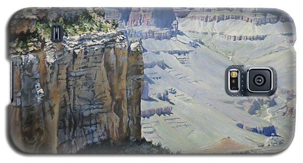 Afternoon At The Canyon Galaxy S5 Case