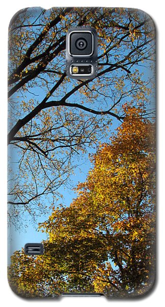 Afternoon Delight Galaxy S5 Case