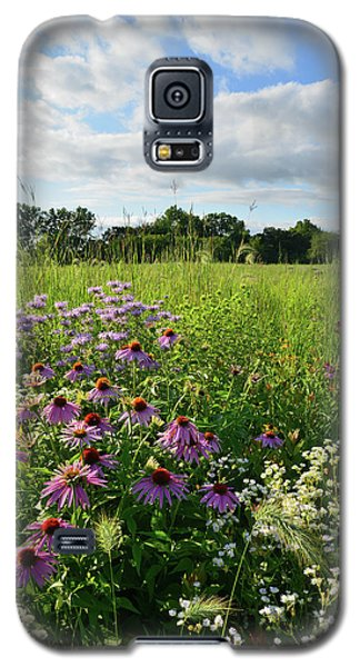 Afternoon In Moraine Hills State Park Galaxy S5 Case