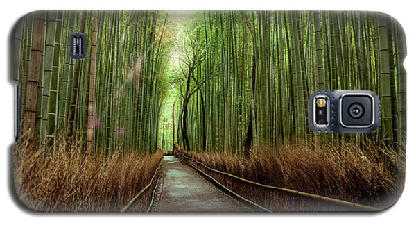 Afternoon In The Bamboo Galaxy S5 Case