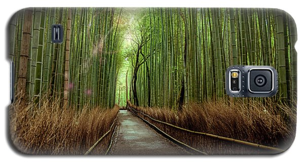Afternoon In The Bamboo Galaxy S5 Case by Rikk Flohr