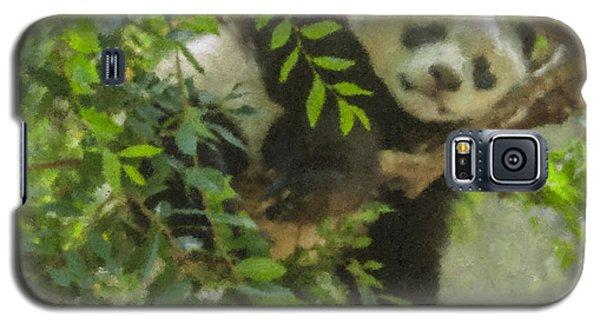 Afternoon Nap Baby Panda Galaxy S5 Case
