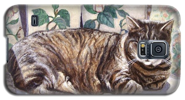 Galaxy S5 Case featuring the painting Afternoon Nap by Laura Aceto