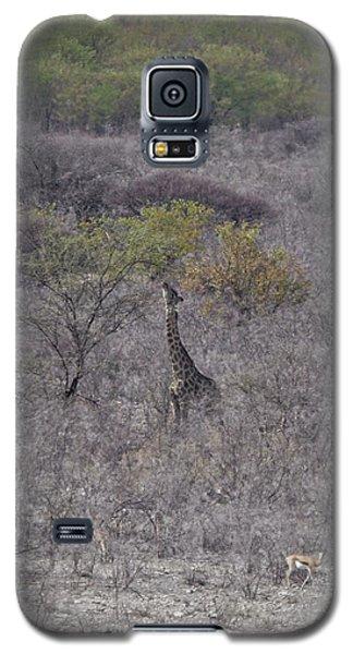 Afternoon Treat Galaxy S5 Case by Ernie Echols