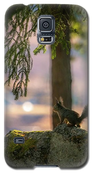 Against Brighter Times Galaxy S5 Case by Rose-Marie Karlsen