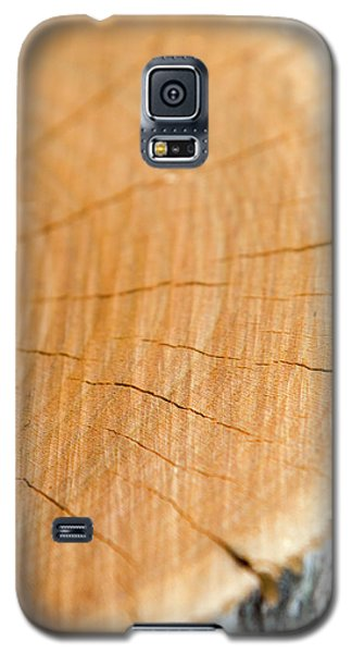 Galaxy S5 Case featuring the photograph Against The Grain by Christina Rollo