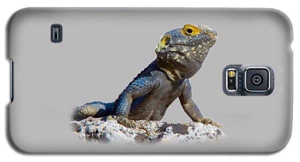 Agama Basking On A Rock T-shirt Galaxy S5 Case