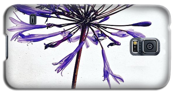 Galaxy S5 Case - Agapanthus 2 by Julie Gebhardt