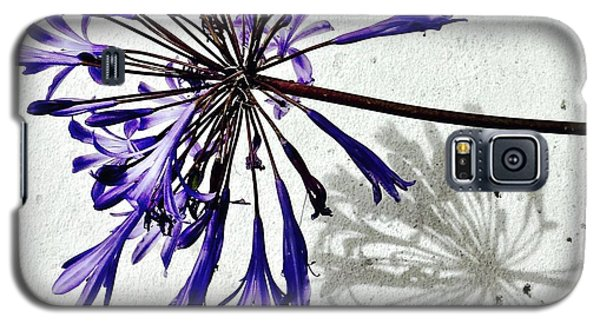 Agapanthus Galaxy S5 Case by Julie Gebhardt