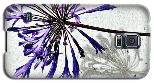 Galaxy S5 Case - Agapanthus by Julie Gebhardt