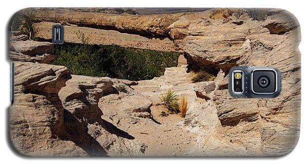 Agate Bridge - Petrified Forest National Park Galaxy S5 Case