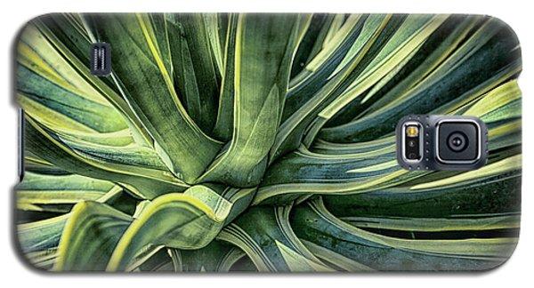 Agave Burst 3 Galaxy S5 Case