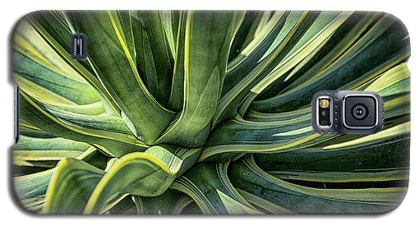 Agave Burst 4 Galaxy S5 Case