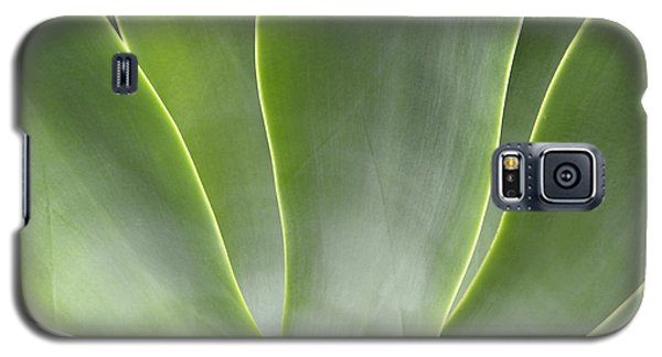 Agave Leaves Galaxy S5 Case