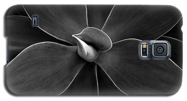 Agave Leaves Detail Galaxy S5 Case by Marilyn Hunt