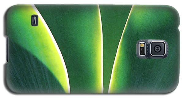 Agave Galaxy S5 Case