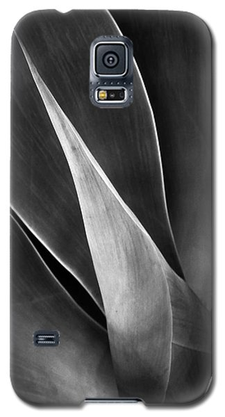 Agave No 3 Test Galaxy S5 Case by Ben and Raisa Gertsberg