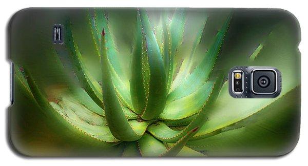 Agave Sunrise Galaxy S5 Case by Joseph Hollingsworth