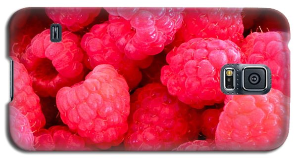 Agenda For Today ... Raspberry Jam Galaxy S5 Case