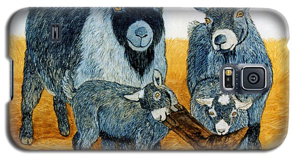 Galaxy S5 Case featuring the painting Agoudi Family by Jan Amiss