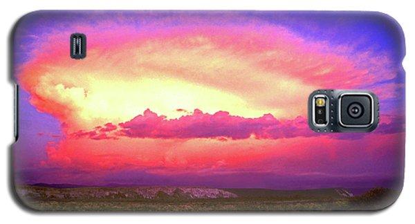 Airgasm Galaxy S5 Case