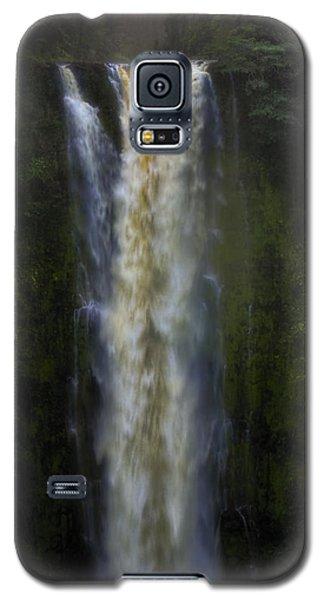 Galaxy S5 Case featuring the photograph Akaka Falls by Ellen Heaverlo