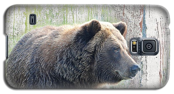 Alaska Brown Bear  Galaxy S5 Case