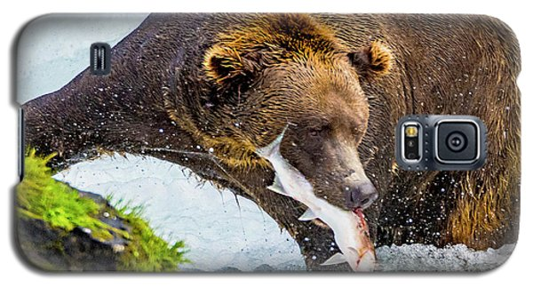 Alaska Brown Bear Galaxy S5 Case