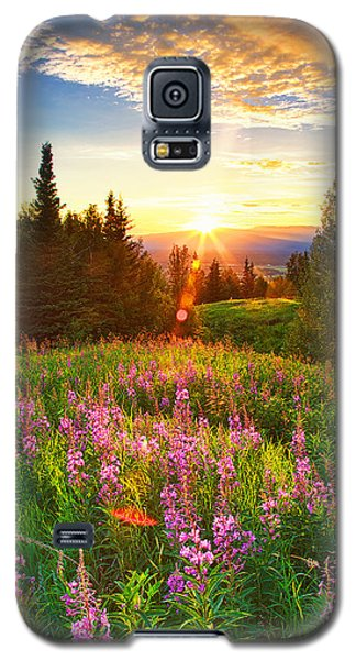 Alaska Field Galaxy S5 Case