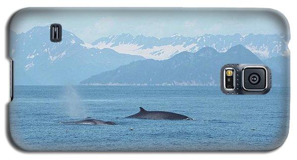 Alaska Finback Whales Galaxy S5 Case