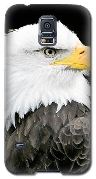Alaskan Bald Eagle Galaxy S5 Case