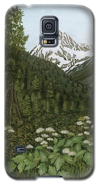 Alaskan Mountains Galaxy S5 Case