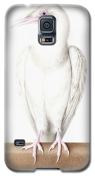 Albino Crow Galaxy S5 Case