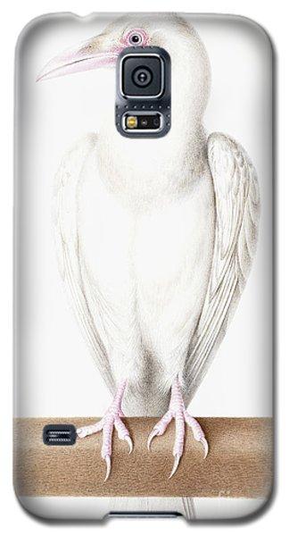 Albino Crow Galaxy S5 Case by Nicolas Robert
