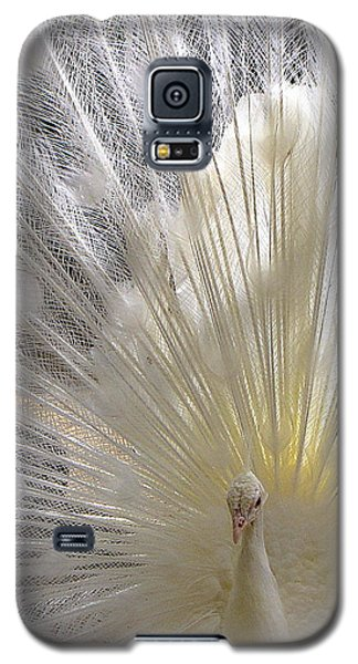 Pure White Peacock Galaxy S5 Case