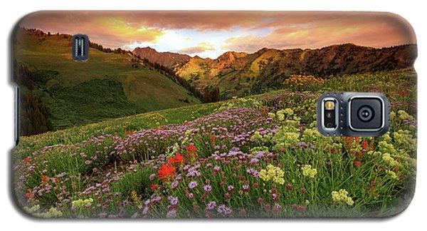 Albion Basin Golden Sunrise Galaxy S5 Case