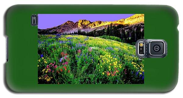 Albion Meadows Galaxy S5 Case
