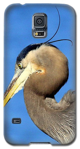 Alfalfa Galaxy S5 Case
