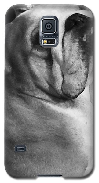 Alfred Hitchcock Bullie Pose Galaxy S5 Case by Kym Backland