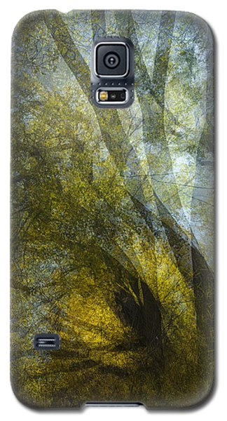 All Fall Down Galaxy S5 Case