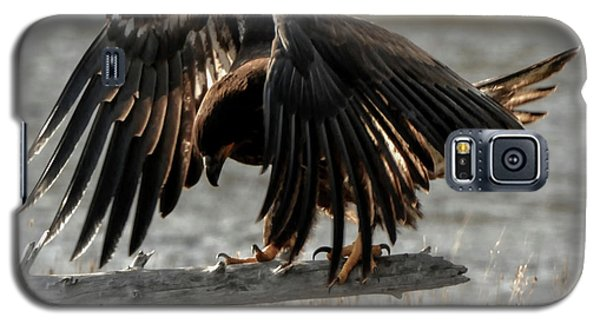 All Feathers Galaxy S5 Case