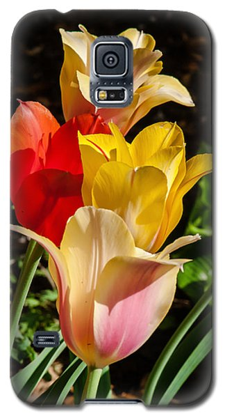 Galaxy S5 Case featuring the photograph All In A Pretty Row by Jim Moore
