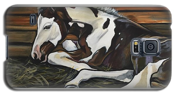 All Legs And Spots Galaxy S5 Case
