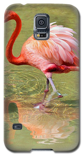 All Ruffled Up Galaxy S5 Case