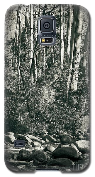 Galaxy S5 Case featuring the photograph All Was Tranquil by Linda Lees