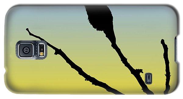 Allen's Hummingbird Silhouette At Sunrise Galaxy S5 Case