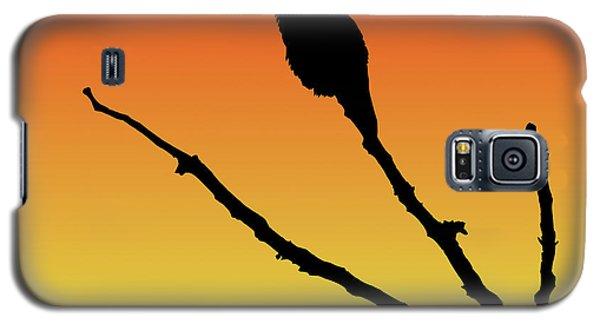 Allen's Hummingbird Silhouette At Sunset Galaxy S5 Case