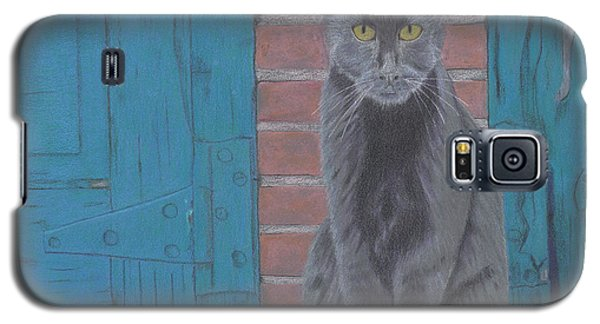 Galaxy S5 Case featuring the drawing Alley Cat by Arlene Crafton