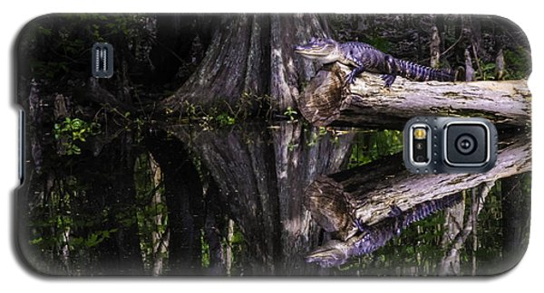 Alligators The Hunt, New Orleans, Louisiana Galaxy S5 Case